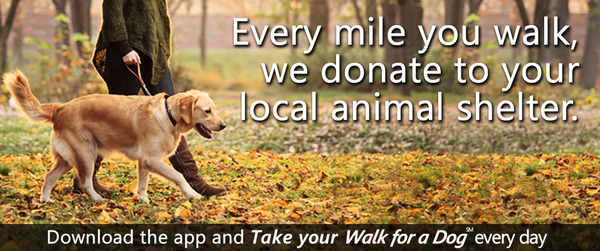 Walk_for_a_Dog_home1 2
